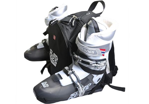 sled dogs snowskates Do you need any other equipment